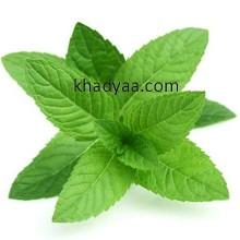 Mint leaf copy