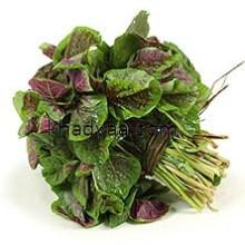 amaranth-leaves copy