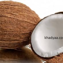 coconut-fruit copy