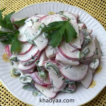 radish-onion-salad copy